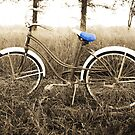 """My """"New"""" Bike by Jennifer Potter"""