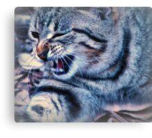 i'm a tiger......growl Canvas Print