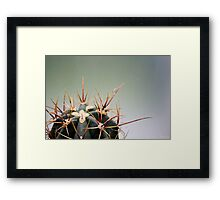 Spike the Cactus Framed Print