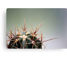 Spike the Cactus Canvas Print
