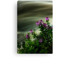 Flowers Over Mill Creek Canvas Print