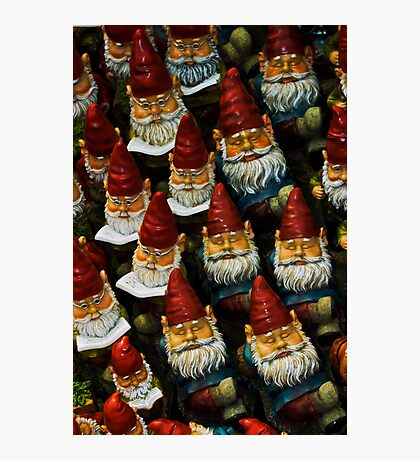 Gnomes Photographic Print