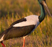 Dusk Stork Sticker