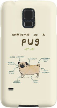 Anatomy of a Pug by Sophie Corrigan