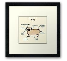 Anatomy of a Pug Framed Print