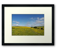 One Million Buttercups Framed Print