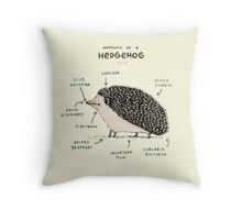 Anatomy of a Hedgehog Throw Pillow