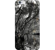 Mangrove Swamp iPhone Case/Skin