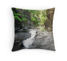 Smooth Waters Throw Pillow