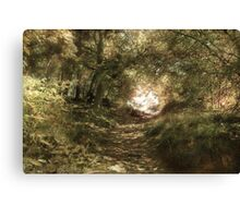 Up The Path Canvas Print
