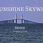 Sunshine Skyway Bridge by June Holbrook