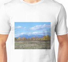 Mount Katahdin from Stacyville Unisex T-Shirt