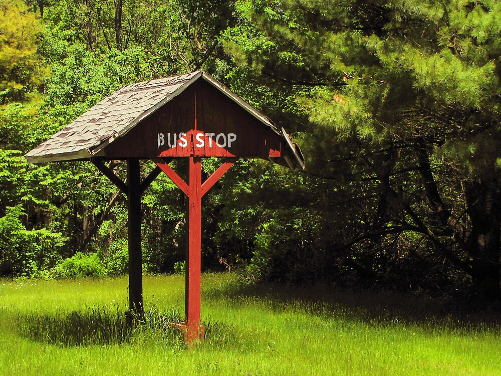 Country Bus Stop by Pamela Phelps