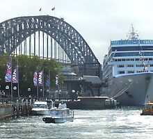 Ready to Sail  Sydney Harbour by sandysartstudio