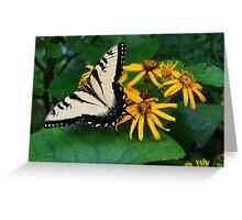 Blue Ridge Butterfly Greeting Card