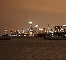 Chicago Skyline - Montrose Harbor by jdbussone