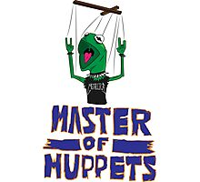 Master Of Muppets Photographic Print