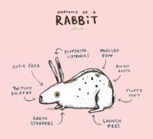 Anatomy of a Rabbit Kids Clothes