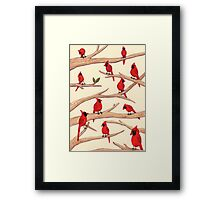 Cardinals Framed Print
