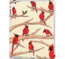 Cardinals iPad Case/Skin