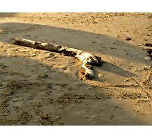 On the Beach 5 Photographic Print