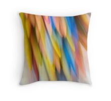 Multi-Colored Throw Pillow