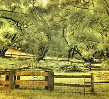 Donnelly River farm yard, Western Australia by BigAndRed