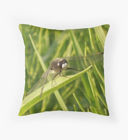 Soaking Up The Sun Throw Pillow