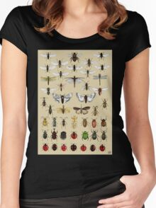 Entomology Insect studies collection  Women's Fitted Scoop T-Shirt