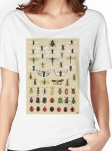 Entomology Insect studies collection  Women's Relaxed Fit T-Shirt
