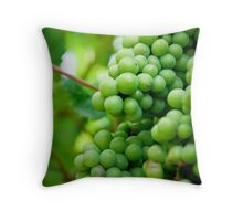 Winery Shoot Throw Pillow