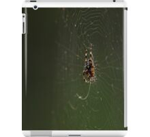 Caught in a Web iPad Case/Skin