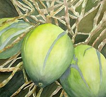 Going Coconuts by Rosie Brown