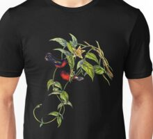 The buffy hummingbird (Leucippus fallax) Unisex T-Shirt