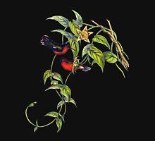 The buffy hummingbird (Leucippus fallax) Unisex T-Shirt