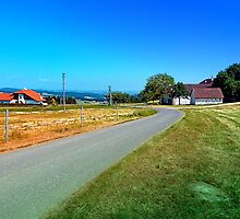 Another country road in summertime by Patrick Jobst