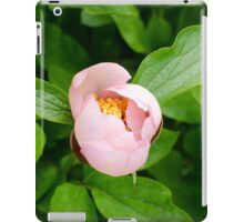 Pink Peony Bud iPad Case/Skin