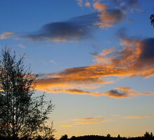 Golden Clouds #1 by MarianaEwa