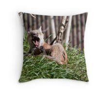 Scratch & Yawn Throw Pillow