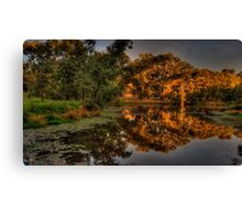 And His Ghost May Be heard #3 - Wonga Wetlands, Albury - The HDR Experience Canvas Print
