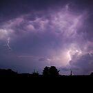 Purple Haze by Dennis Jones - CameraView