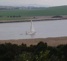 Sailing into Launceston (Tasmania/Australia) via the Tamar River by Ritchard Mifsud