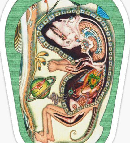 embryo - m. a. weisse Sticker