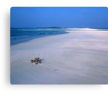 Heavenly Maldives Beach Canvas Print