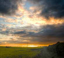Winterbourne Sunset by Tim Hall