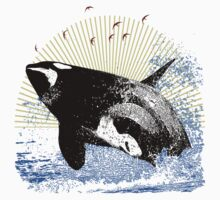 Killer Whale by Spyder