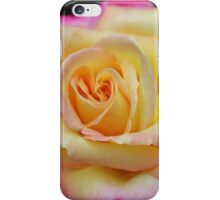 One Colorful Rose iPhone Case/Skin