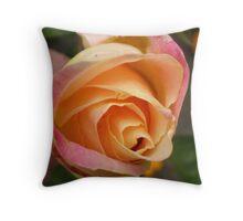 A Rose begining Throw Pillow