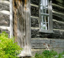 Country Home by Lynn Armstrong