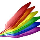 Rainbow Feathers by Dave Martin